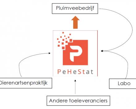 Over PeHeStat